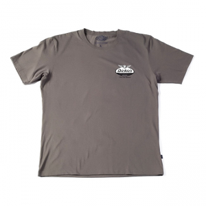 Dickies T-Shirt - MC Oval Wings Grau