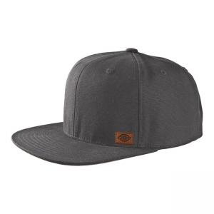 Dickies Cap - Minnesota Grau