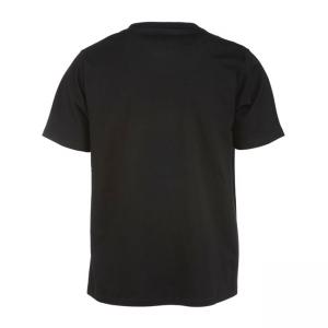 Dickies T-Shirt - Franklin Park Schwarz