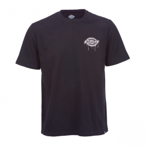 Dickies T-Shirt - Clearfield Schwarz